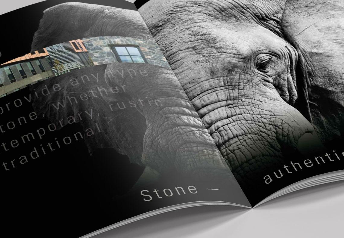 alsecco product launch brochure design