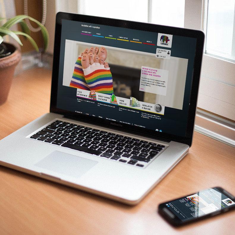 Caparol Website Design